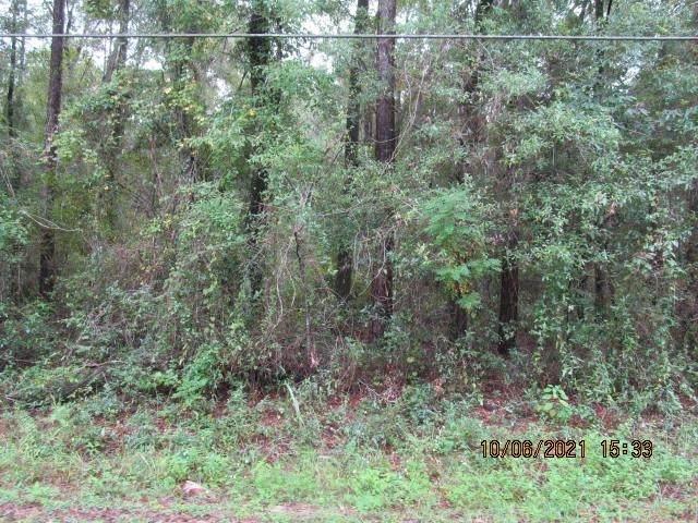 4407 Entrepot Court, Tallahassee, FL 32310 (MLS #338388) :: Team Goldband
