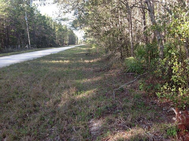 0 Caribbean, Perry, FL 32348 (MLS #290550) :: Best Move Home Sales