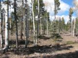 Lot 49 Palo Flechado Ridge Road - Photo 1