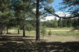Lot 1251 Nelson Circle - Photo 1