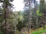 Lot 54 Taos Pines Ranch - Photo 2