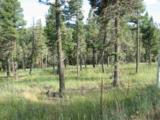Lot 11 Palo Flechado Ridge Road - Photo 2