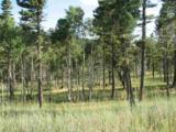 Lot 11 Palo Flechado Ridge Road - Photo 4