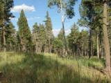 Lot 11 Palo Flechado Ridge Road - Photo 5