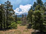Sierra Blanca Lot 3 - Photo 5