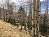 Lot 1617 Sky View Way - Photo 8