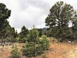 Lot 17 Mesa Lane - Photo 12