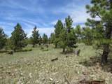 TBD Beaver Loop Lot 152 - Photo 12
