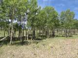 TBD Beaver Loop Lot 152 - Photo 2