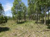 TBD Beaver Loop Lot 152 - Photo 5