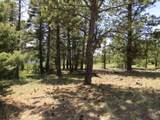 126 Beaver Loop Lot 126 - Photo 2