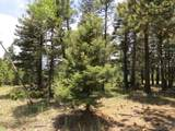 126 Beaver Loop Lot 126 - Photo 3