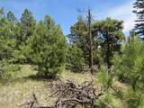 126 Beaver Loop Lot 126 - Photo 8