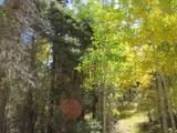 TBD Sierra Blanca Trail Lot 8 - Photo 1