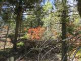 TBD Sierra Blanca Trail Lot 22 - Photo 12