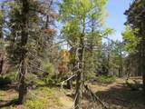 TBD Sierra Blanca Trail Lot 22 - Photo 13