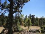 TBD Sierra Blanca Trail Lot 22 - Photo 6