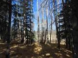 50 Elk Ridge Road - Photo 5