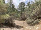 Lot 8 Deer Mesa - Photo 1