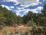 157 Gallina Canyon - Photo 1