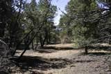 Lot 14 Deer Mesa - Photo 3
