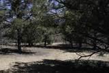 Lot 14 Deer Mesa - Photo 4