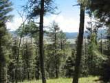 Lot 13 Palo Flechado Ridge Road - Photo 1
