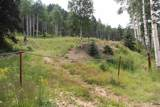 Lot 38 39 40 Youngs Ranch Subdivision - Photo 10