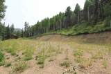 Lot 38 39 40 Youngs Ranch Subdivision - Photo 6