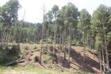 Lot 38 39 40 Youngs Ranch Subdivision - Photo 9