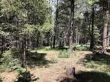Lot 146 San Andres Dr - Photo 10