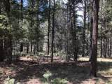 Lot 146 San Andres Dr - Photo 11
