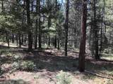 Lot 146 San Andres Dr - Photo 13