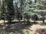 Lot 146 San Andres Dr - Photo 7