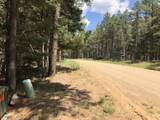 Lot 146 San Andres Dr - Photo 8