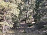 Lot 84 Valle Escondido - Photo 12