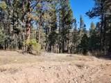 Lot 155 Valle Escondido - Photo 12