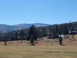 Lot 155 Valle Escondido - Photo 13
