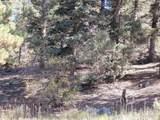Lot 155 Valle Escondido - Photo 9