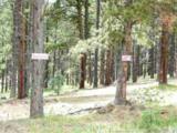 Lot 9 Pine Ridge - Photo 1
