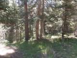 Lot 118 and 119 Wheeler Peak - Photo 1