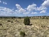 Lot 21 Sandia Canyon Road - Photo 1