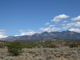 Trementina Trail (B001), Arroyo Hondo, NM 87513 (MLS #99178) :: Page Sullivan Group | Coldwell Banker Lota Realty