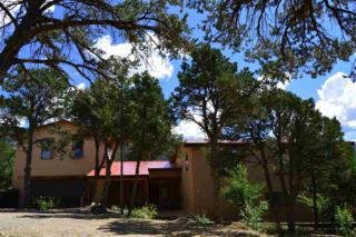 61 Walking Rain Road, Taos, NM 87514 (MLS #99988) :: Page Sullivan Group | Coldwell Banker Lota Realty