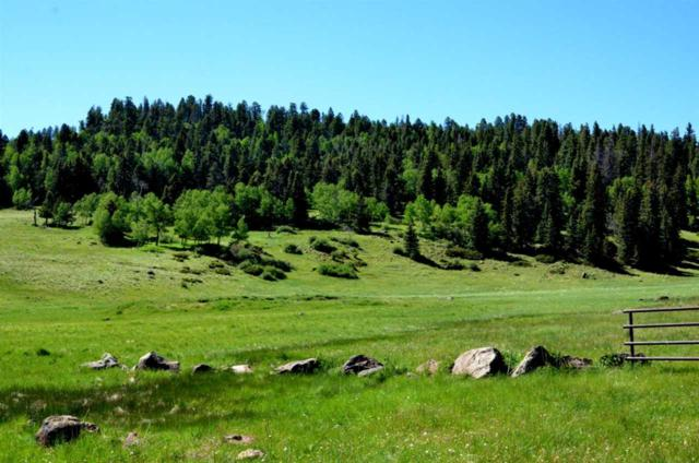 100 acres Nm Hwy 120, Angel Fire, NM 87710 (MLS #100151) :: The Chisum Group