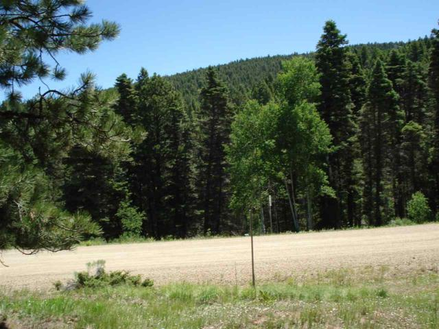 271 Back Basin Road, Angel Fire, NM 87710 (MLS #100160) :: Page Sullivan Group | Coldwell Banker Lota Realty