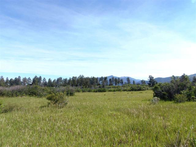 2 tenths M on L Lama Foundation Road, Questa, NM 87556 (MLS #100185) :: Page Sullivan Group | Coldwell Banker Mountain Properties
