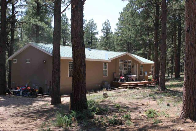 39 Conchas Drive, Eagle Nest, NM 87718 (MLS #100222) :: Page Sullivan Group | Coldwell Banker Mountain Properties