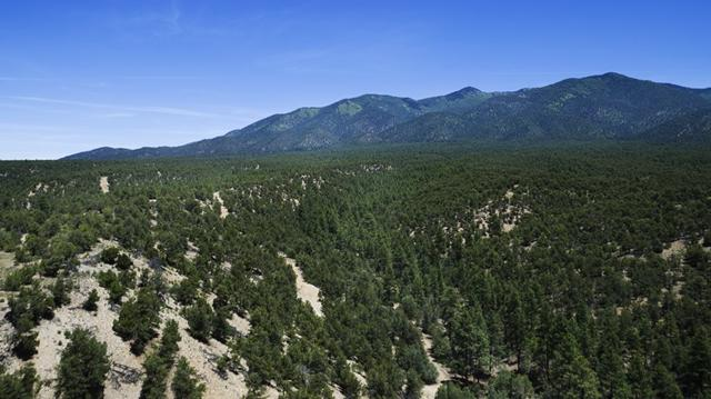 Lot 20 Turley Mill, Valdez, NM 87513 (MLS #100258) :: Page Sullivan Group | Coldwell Banker Mountain Properties