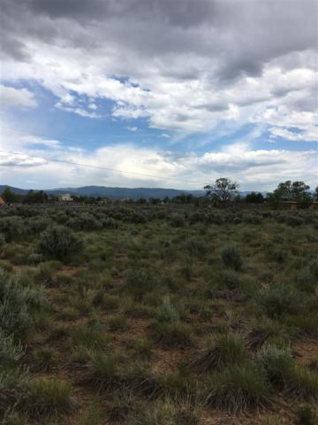 Lot 2 Upper Colonias, El Prado, NM 87529 (MLS #100281) :: Page Sullivan Group | Coldwell Banker Lota Realty